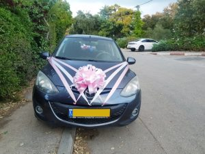 לוחית זיהוי מוסוות במכונית חתונה