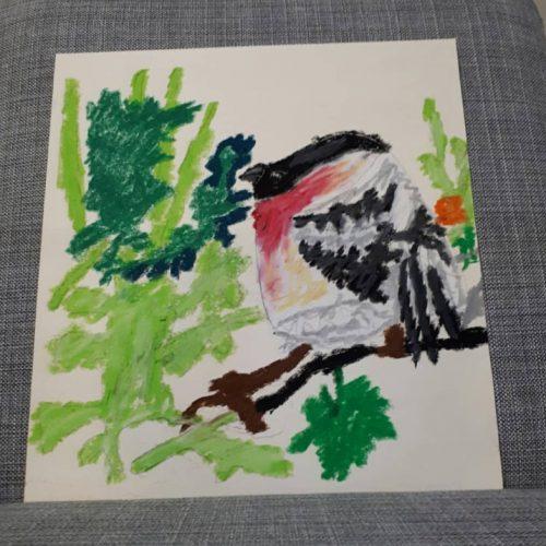 170 ציפור